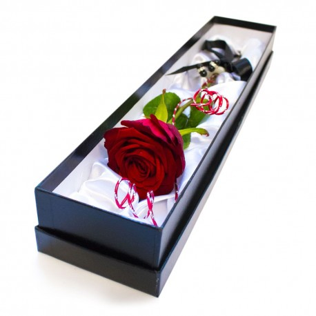 Perfect Single Red Rose 2019 JHB ONLY